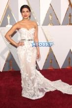 WENN 88th Annual Academy Awards Dolby Theatre Oscars Priyanka Chopra