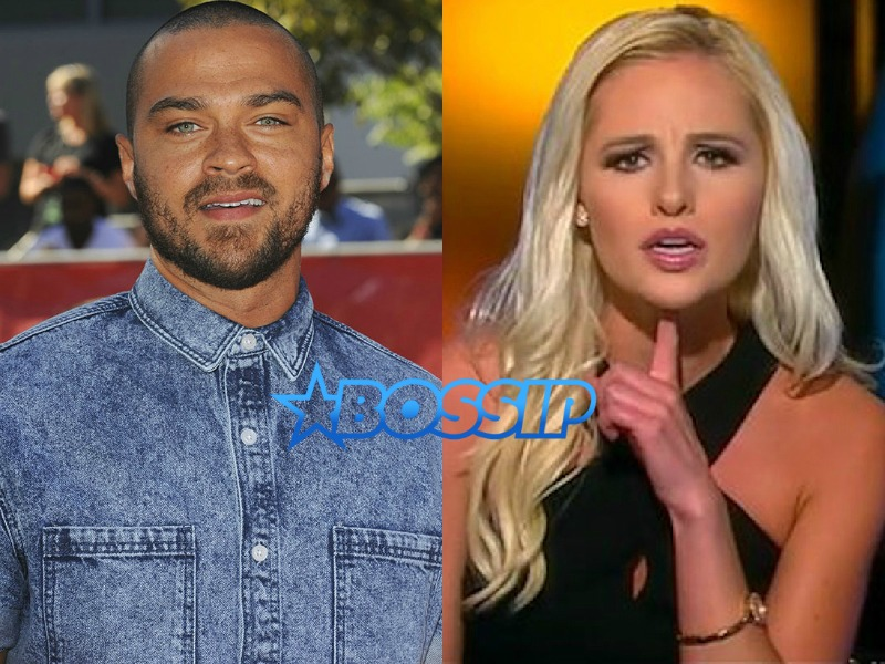Jesse Williams Tomi Lahren