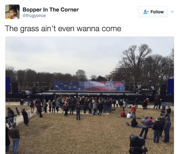 notevengrass