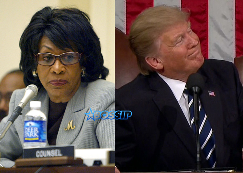 Maxine Waters Donald Trump WENN