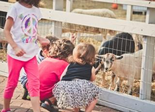 Children at a farm.
