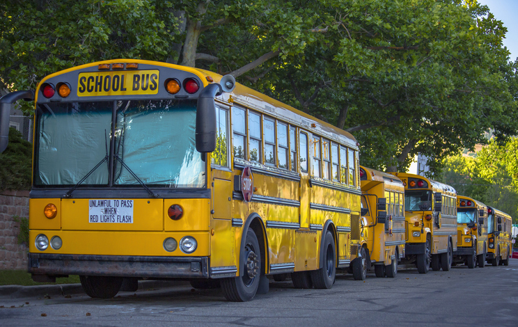 Row Of Yellow Bus On Road