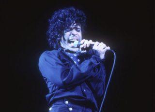 Prince Concert 1983