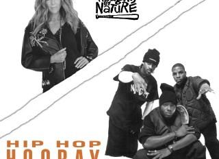 Rita Wilson Hip Hop Hooray Remix