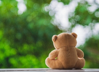 Back Side Teddy Bear Sitting On White Wooden Floor Seeing Rain Falling With Green Nature Background