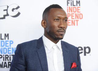 2017 Film Independent Filmmaker Grant And Spirit Award Nominees Brunch - Arrivals