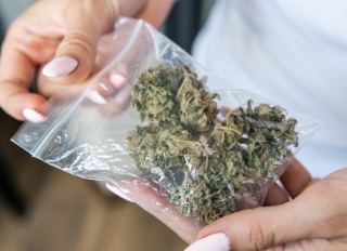 Midsection Of Woman Holding Marijuana