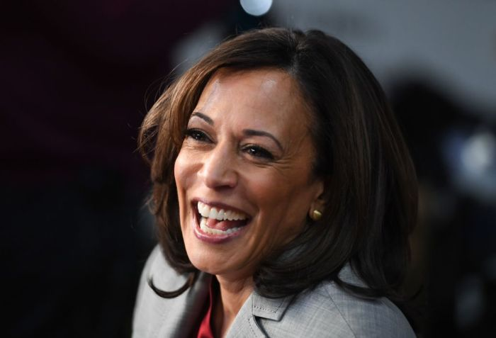 US-POLITICS-VOTE-DEMOCRATS-BIDEN-HARRIS