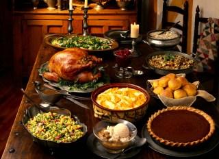 Turkey dinner - stock photo