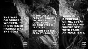 Monogram Law Campaign photos