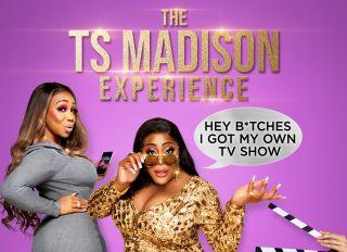 TS Madison Experience Key Art